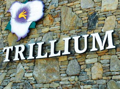 Trillium Spa at Seven Springs Mountain Resort